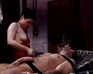 वेश्या उसे बिल्ली के साथ असंभव कर रही है