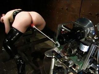 बिल्ली छिड़काव मशीन