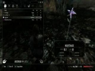 Skyrim परीक्षण वीडियो