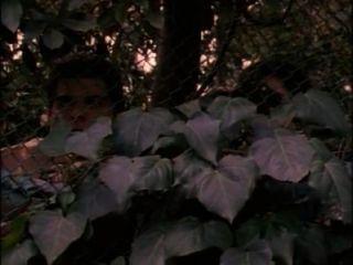 बिकनी यातायात स्कूल - पूरी फिल्म (1997)