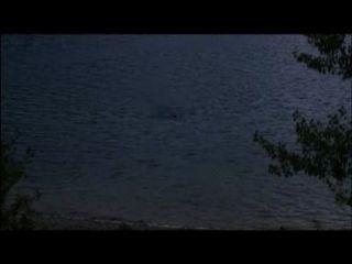 झील 2013 तक अजनबी