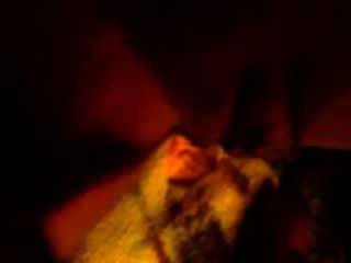 घनत्व गधा बिल्ली में खेल