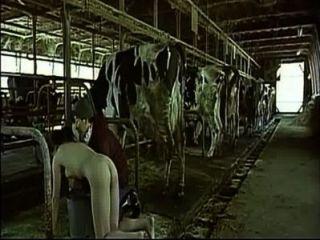 एशियाई महिला एक गाय होने का नाटक कर उसे एक आदमी स्तन के रूप में milked