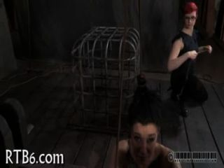 सुंदर शहद उसे पिंजरे में प्रवेश करती है