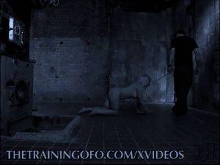 गुलाम प्रशिक्षण