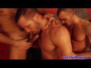 लालची हंस के साथ समलैंगिक नंगा नाच