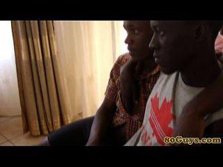 अफ्रीकी बियरबैकर गहरे थ्रोटिंग
