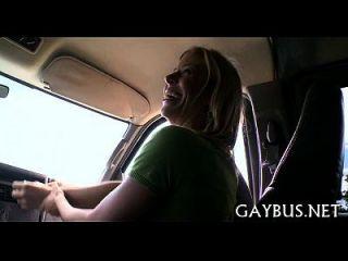 जंगली चोंच कार के अंदर घुड़सवारी