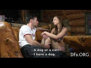 गुलाबी बिल्ली को वैंग की जरूरत है