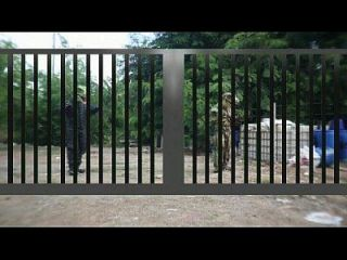 गथई फिल्म 15 जुरासिक अश्लील भाग 1