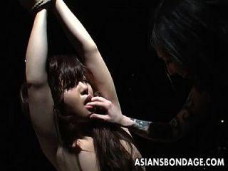 बंधे एशियाई बेब कुछ नंगा नाच चूसने वाला है