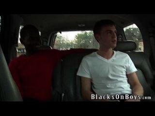 कैमरून डेविस एक काला मुर्गा के हर इंच प्यार करता है