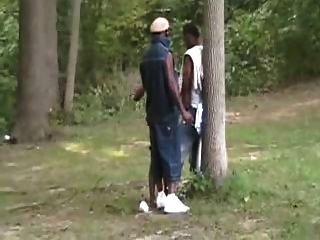 लकड़ी में काले सेक्स पार्टी