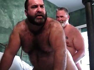 बिग डैडी XXXL मरम्मत भालू
