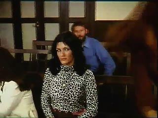 गैंगबैंग im gerichtssaal (Kasimir der kuckuckskleber, 1977)