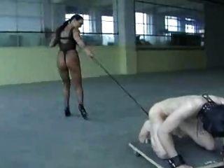 मालकिन प्रशिक्षित गुलाम गेंदों