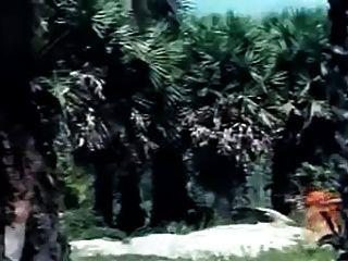 तमिल ब्लू फिल्म - दृश्य 1