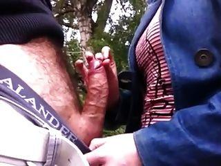पार्क में डिक स्पर्श