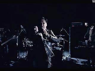Rammstein बिल्ली वीडियो