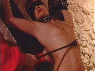 फ्रेंच गुलाम प्रशिक्षण