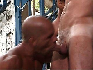 मांसपेशियों के साथ समलैंगिकों पुरुषों