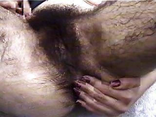 बहुत बालों बिल्ली - ls12