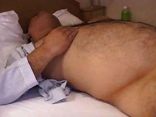 जापानी भालू