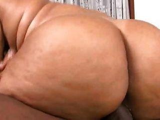 Phat गधा ब्राजील (Eleonora) # 214nt