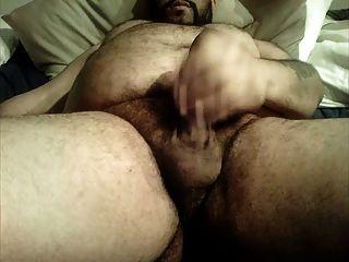 काटा हुआ भालू बड़े बालों पेट