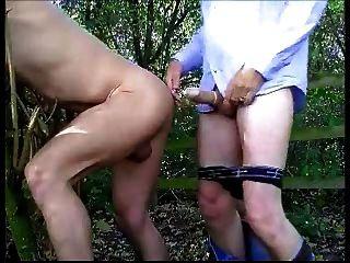 अधिक चूसने और जंगल में कमबख्त