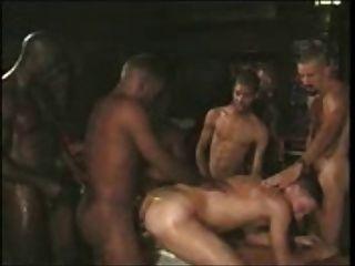 समलैंगिक समूह सफेद दास