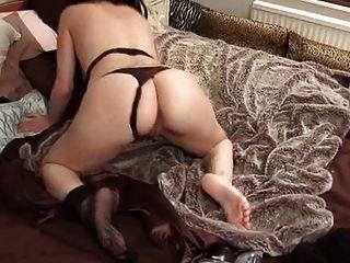 ब्रिटिश फूहड़ Avalon बिस्तर पर खुद के साथ खेलता है