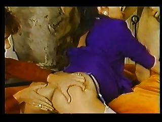 राजवंश (1987) 6