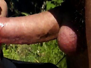 goodsucker मुर्गा चूसना और शुक्राणु खाने