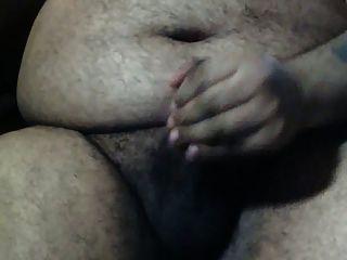 बड़ा पेट कार्यालय में अकेले भालू