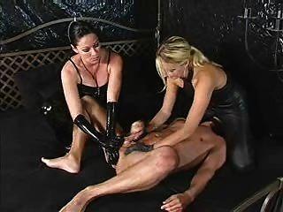 एक भूखा गधा वेश्या के लिए प्रशिक्षण