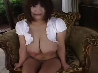 स्तनपान कराने वाली स्तन