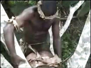 अफ्रीकी शौकीनों आउटडोर त्रिगुट