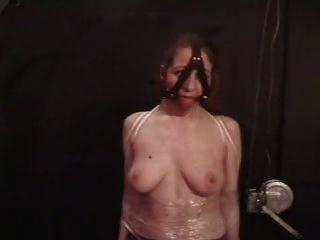 समलैंगिक स्तन सजा
