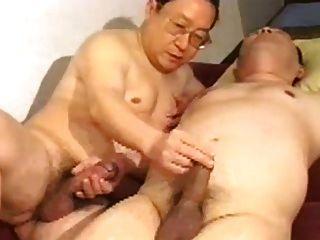 जापानी पिताजी भालू