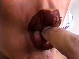 दूधिया preggo lactates