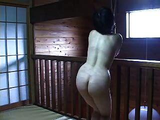 प्रकृति 106 जापानी परिपक्व सजा का शैतान