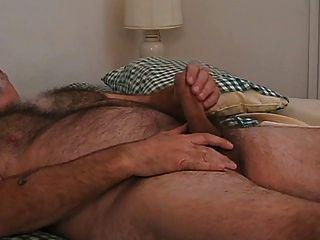 वास्तव में गर्म पिताजी भालू एकल