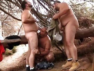 बालों जंगल में भालू 3some