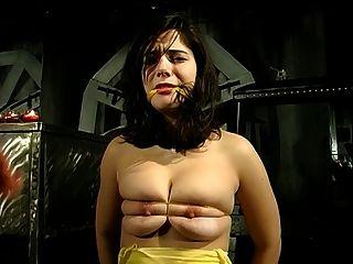 बीडीएसएम सत्र एक बड़े स्तन आकर्षक और उसके मालिक से जुड़े