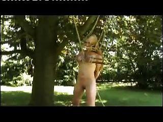 जंगल में स्तन बंधे