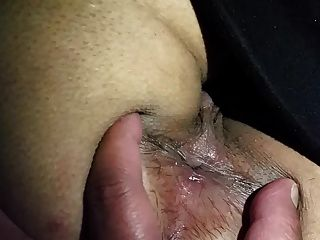 भारतीय गधा भारतीय