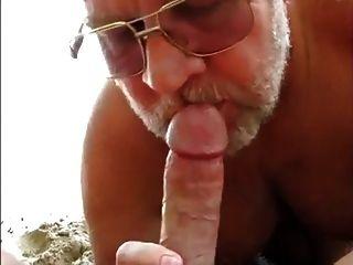 समुद्र तट भालू हाथापाई