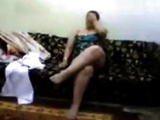 अरब मिस्र balady कुतिया