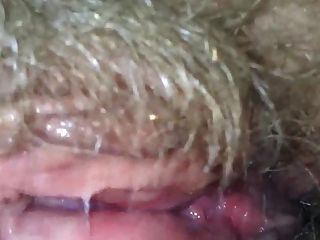 उसके बालों गीला दादी बिल्ली चाट